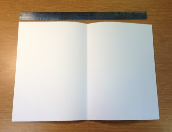 A completely blank book?
