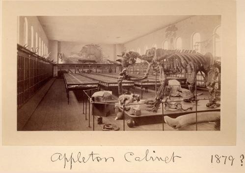Appleton Cabinet