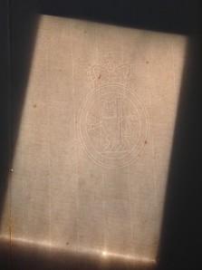 backlit lion watermark in unprinted paper