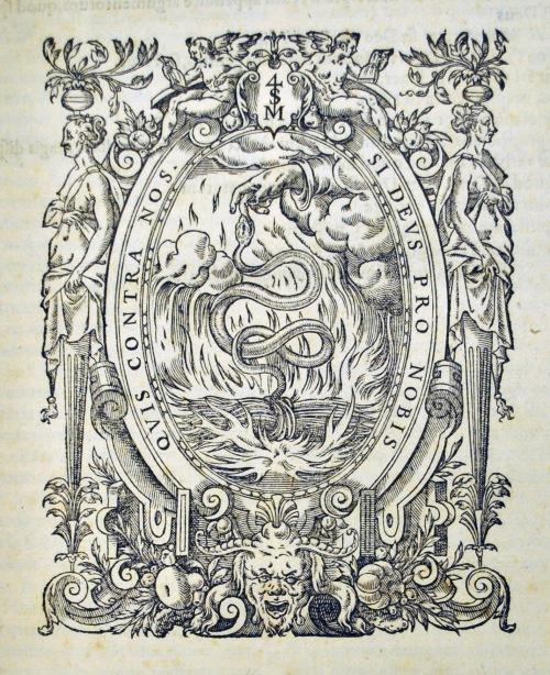 Cyrilli detail