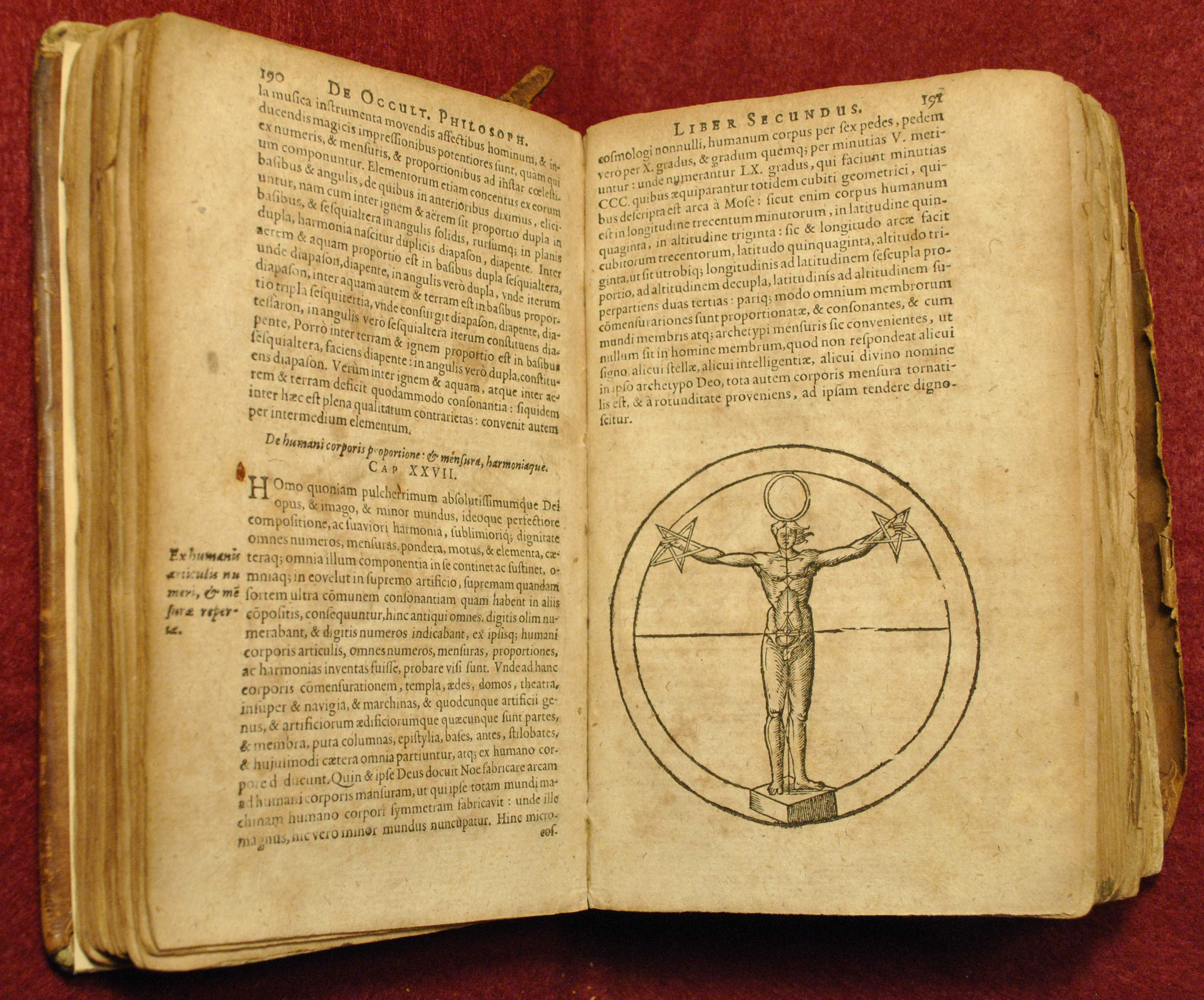 Beware the books… | The Consecrated Eminence