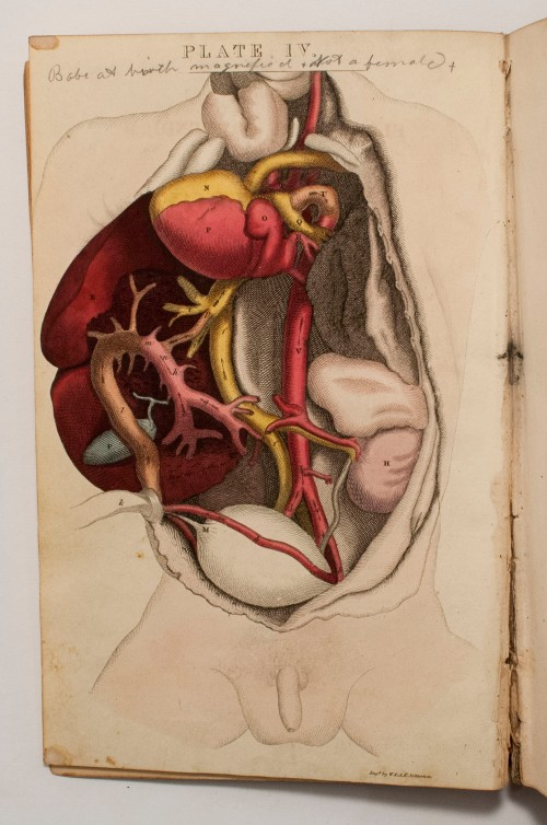An elementary compendium of physiology by Francois Magendie, 1831.